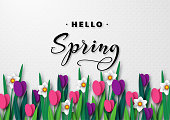 Hello Spring seasonal greeting banner. 3d paper cut spring flowers tulips and narcissus on white spotted background and greeting text. Vector illustration.