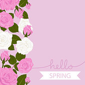 istock Hello Spring vector floral background in pink and white roses and leaves. Welcome Spring concept. 1311614502