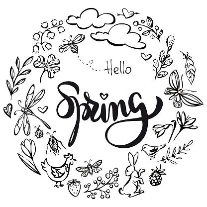 Hello spring wreath illustration