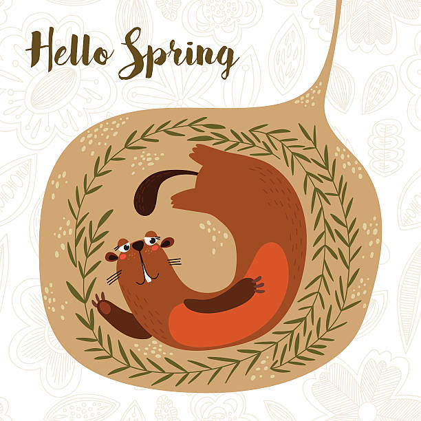 hello spring-cute groundhog day card as funny cartoon character - hibernation stock illustrations, clip art, cartoons, & icons