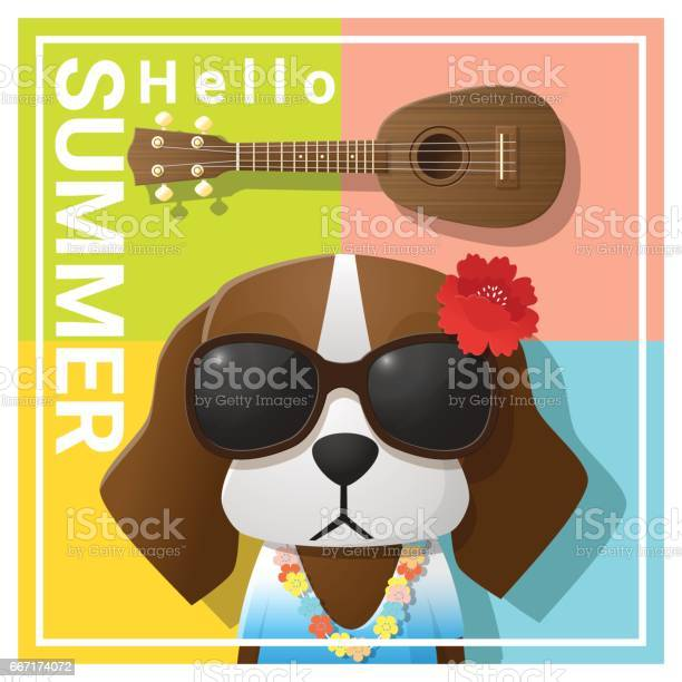 Hello summer background with dog wearing sunglasses vector vector id667174072?b=1&k=6&m=667174072&s=612x612&h=fgx u5kmubpclt4zl0msim6zb n4nmpjg5zsbo9l zs=