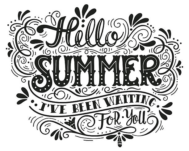 Hello summer. I have been wating for you. Hand lettering vector art illustration
