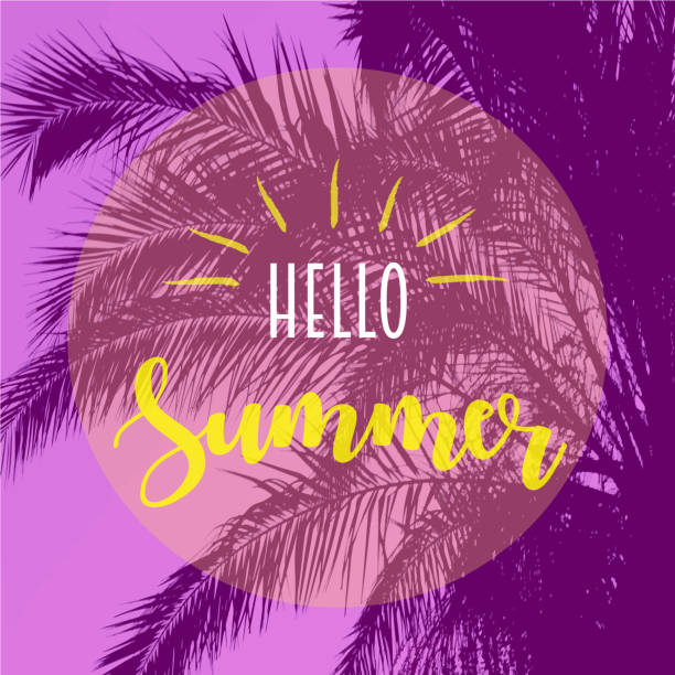 hello summer text with tropical tree leaves on background.summer, nature,fashion concepts - summer fashion stock illustrations, clip art, cartoons, & icons