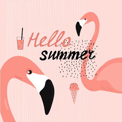 Hello summer. Vector illustration