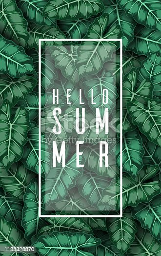 Illustration of Hello summer with Caladium leaves green
