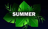 istock Hello summer with summer decoration on dark background 1314941438