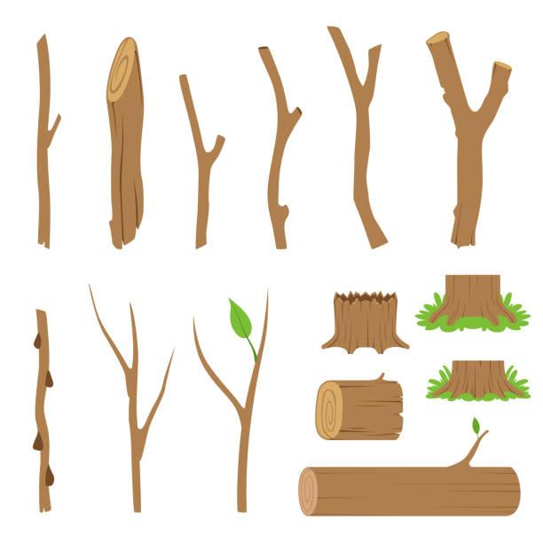 Hemp, logs, branches and sticks of forest trees. Vector illustration vector art illustration