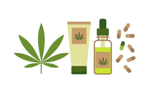 Hemp products concept. Oil, cream and capsules from cannabis. Vector Hemp products concept. Oil, cream and capsules from cannabis. Vector nutritional supplement stock illustrations