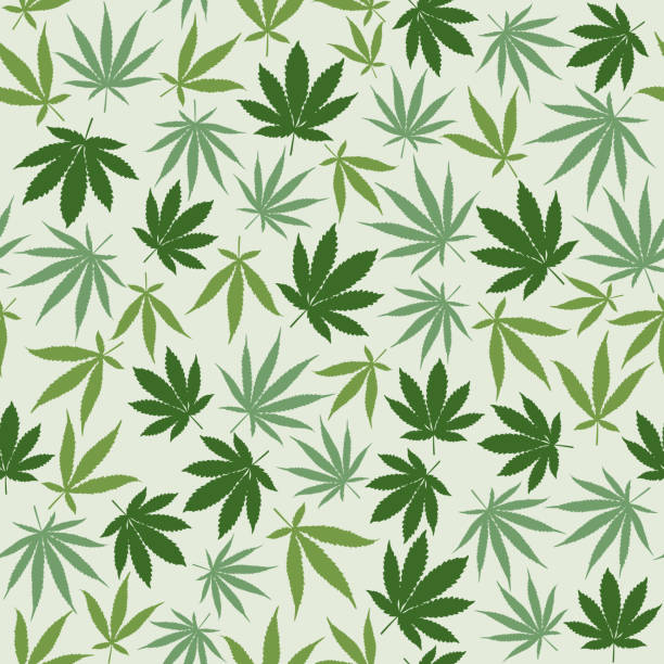 Hemp seamless pattern Hemp seamless pattern background with different leaves, herbal medicine and cannabis concept marijuana stock illustrations