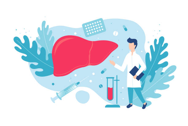 Hepatology and gastroenterology. Prevention of liver disease. Medicine and health. Hepatology and gastroenterology. Prevention of liver disease. Medicine and health. Isolated vector illustration bile stock illustrations