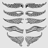 Heraldic bird, angel wings vector set
