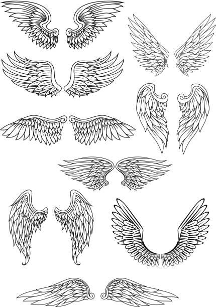 heraldic bird or angel wings set - angels tattoos stock illustrations, clip art, cartoons, & icons