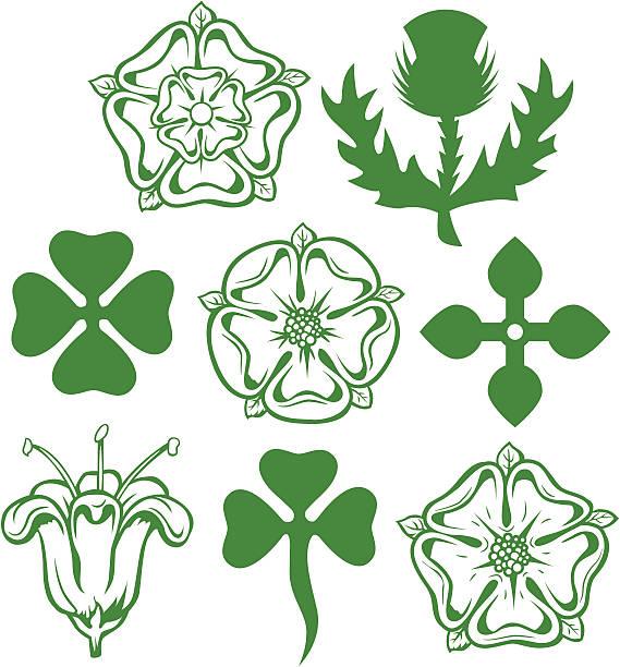Heraldic Flowers Traditional flower symbols and illustrations for logos and heraldic designs alba stock illustrations