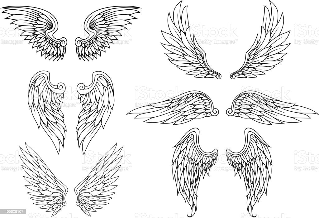 Heraldic wings set vector art illustration
