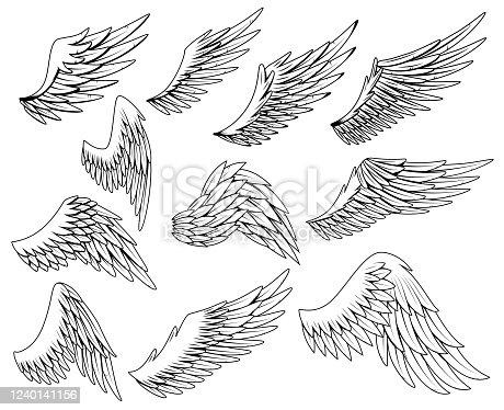 Heraldic wings set. Vintage birds wings. Set of design elements in coloring style.