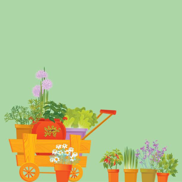 Herb Background vector art illustration