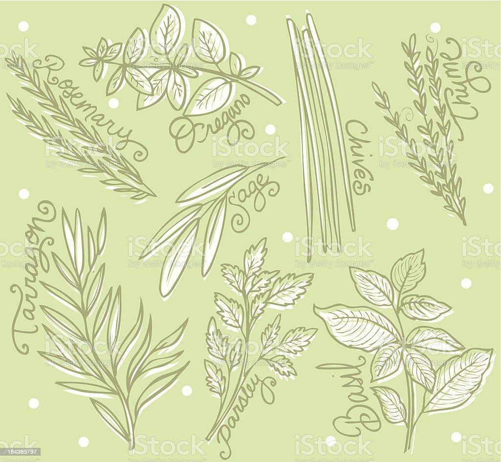 herb garden royalty-free stock vector art