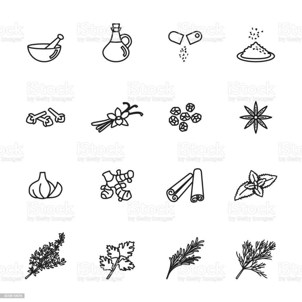 herb icons set. Line Style stock vector. vector art illustration