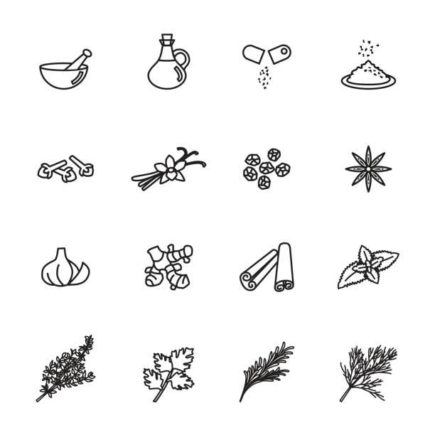 kraut-symbole festgelegt. line style lager vektor. - kräutermischung stock-grafiken, -clipart, -cartoons und -symbole