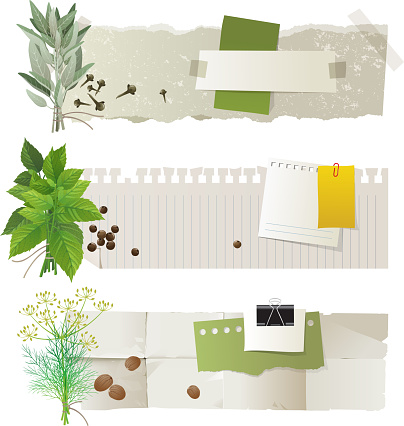 Herbal Banners Stock Illustration Download Image Now Istock