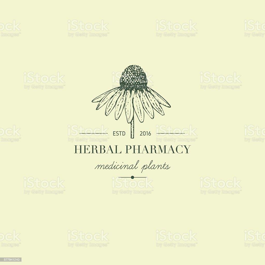 Herbal logo. vector art illustration