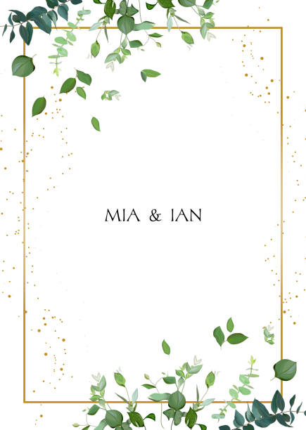 Herbal minimalistic vector frame. Herbal minimalistic vector frame. Hand painted plants, branches, leaves on white background. Greenery wedding square invitation. Watercolor style. Gold line art. All elements are isolated and editable lush foliage stock illustrations