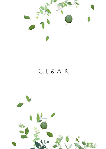 Herbal minimalistic vector frame clipart