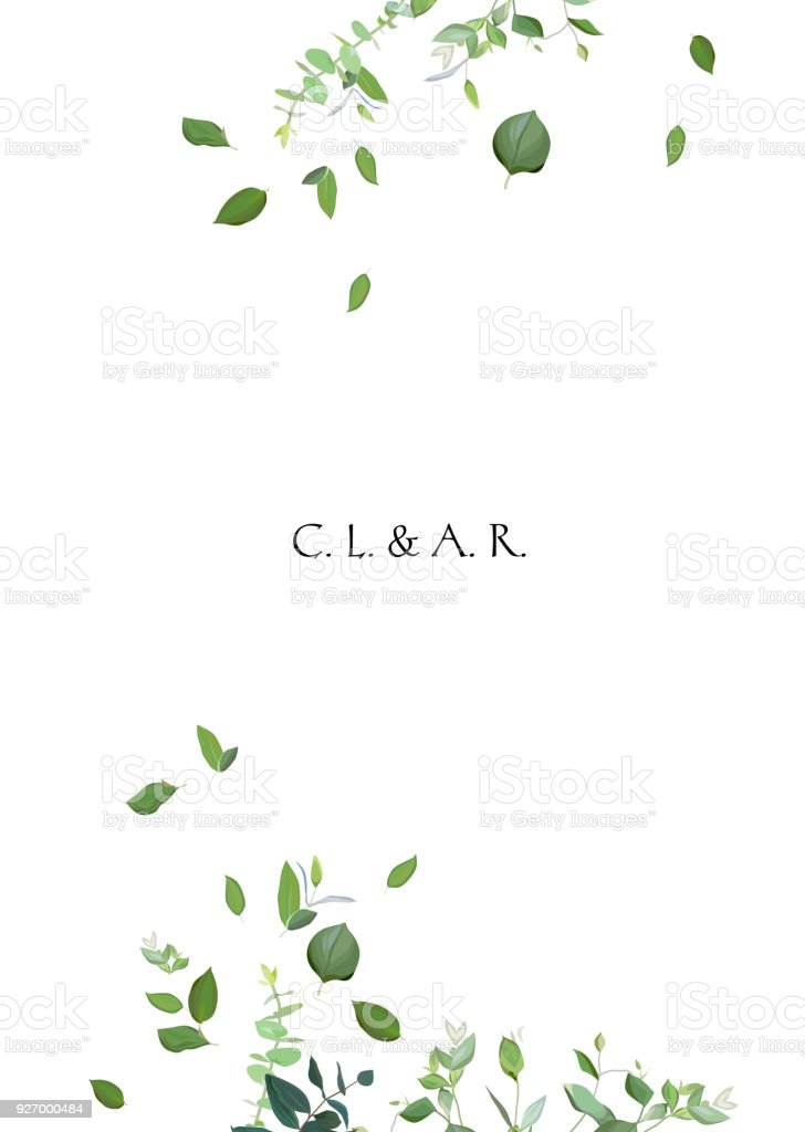 Herbal minimalistic vector frame vector art illustration