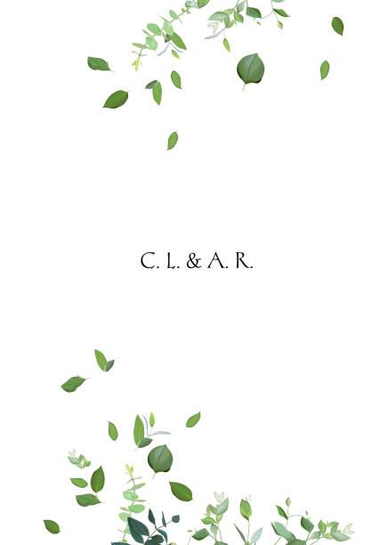 herbal minimalistic vector frame - vintage nature stock illustrations, clip art, cartoons, & icons