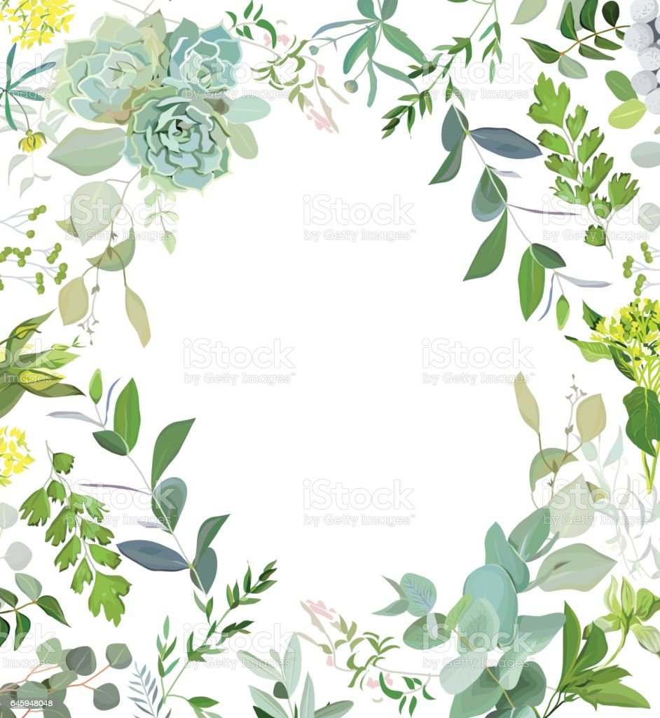 Herbal mix square vector frame. Hand painted plants, branches, l vector art illustration