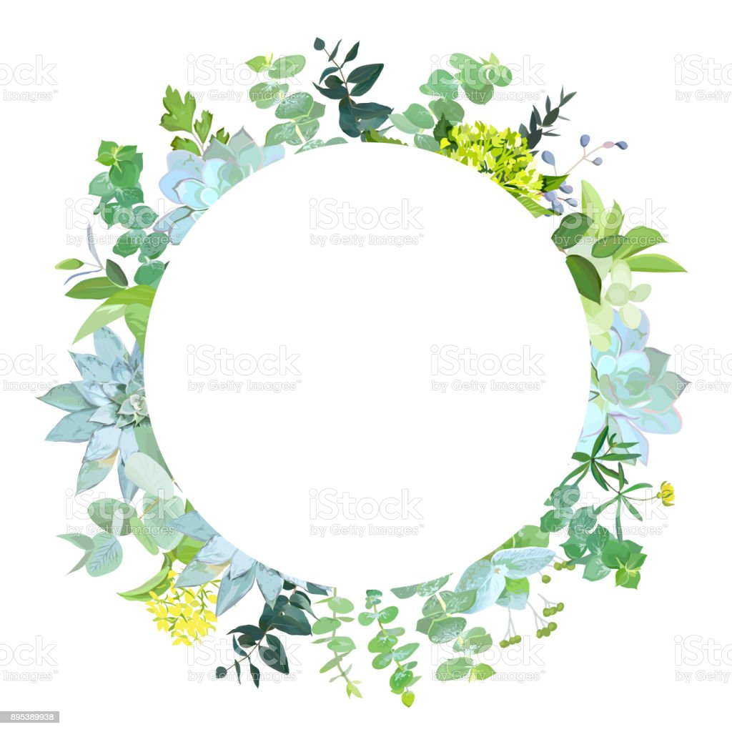 Herbal Mix Vector Round Frame Stock Vector Art & More Images of ...
