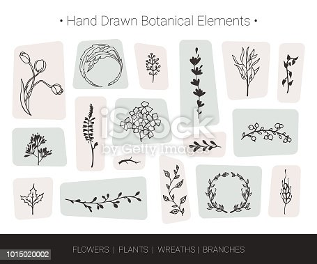 Botanical vector design elements. Hand drawn vector silhouettes of flowers, herbs, wreaths, tree branches. Logo design, wedding invitation, greeting card decor, fashion textile and prints isolated on background.