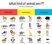 Herbivores, carnivores, omnivores. Animal game for children - guess who is who. Think, cut, sort by groups. Lion, kiwi, hippo, shark, koala, deer, platypus, anteater, walrus