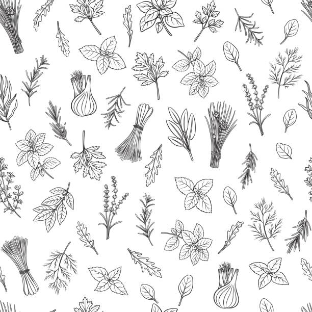 herbs and spice seamless pattern - лекарственная трава stock illustrations