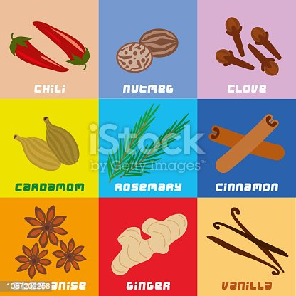 Vector illustration of Herbs and Spices Collection Simplified Geometric Clip Art