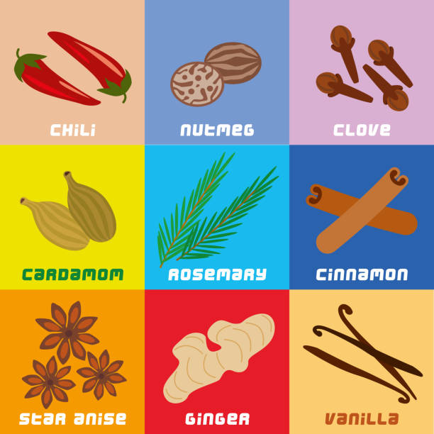 Herbs and Spices Collection Simplified Geometric Clip Art Vector illustration of Herbs and Spices Collection Simplified Geometric Clip Art allspice stock illustrations