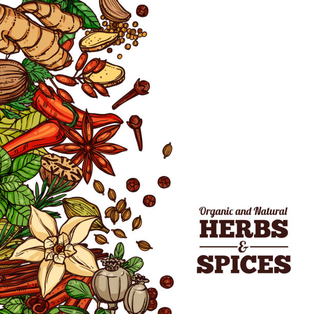 herbs and spices color background - indian food stock illustrations, clip art, cartoons, & icons