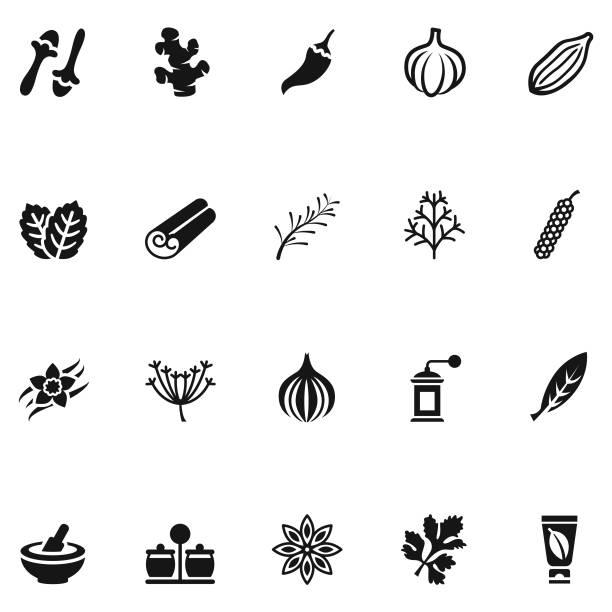 stockillustraties, clipart, cartoons en iconen met kruiden en specerijen icon set - vanille