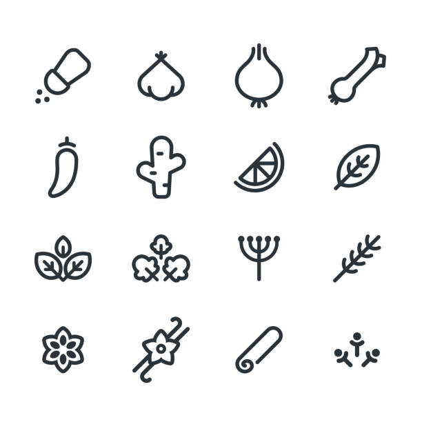 Herbs and spices icons Spices and aromatics icon set. Simple and minimal line symbols of common herbs and seasonings. Vector illustration. basil stock illustrations