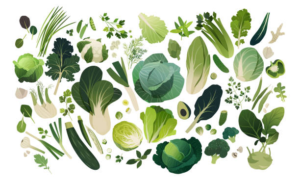 Herbs and vegetables pattern Isolated herbs and vegetables managed into pattern, leafy greens template background avocado clipart stock illustrations