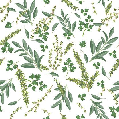 Herbs Cooking Seamless Pattern
