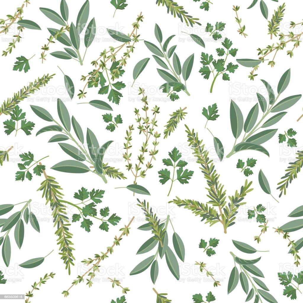 Ervas para cozinhar sem costura padrão - ilustração de arte em vetor