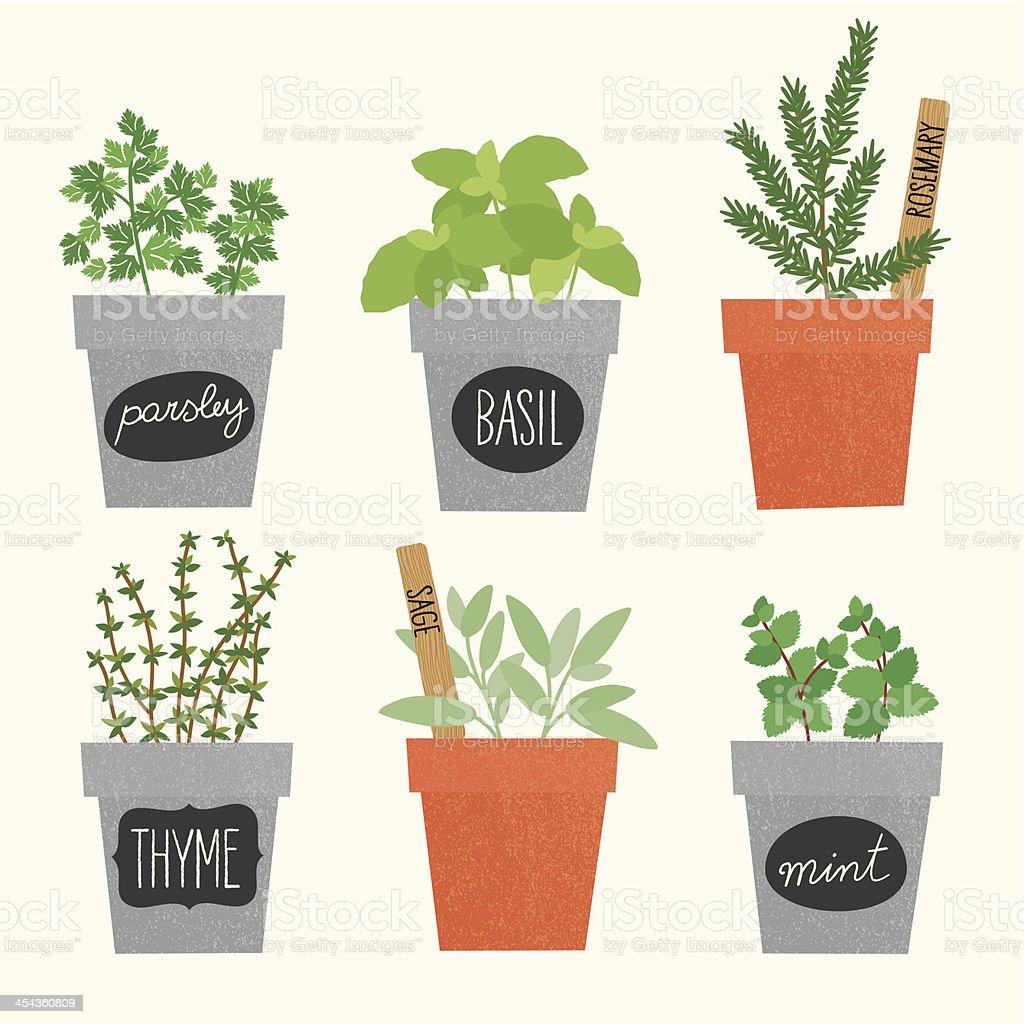 Herbs pots vector art illustration