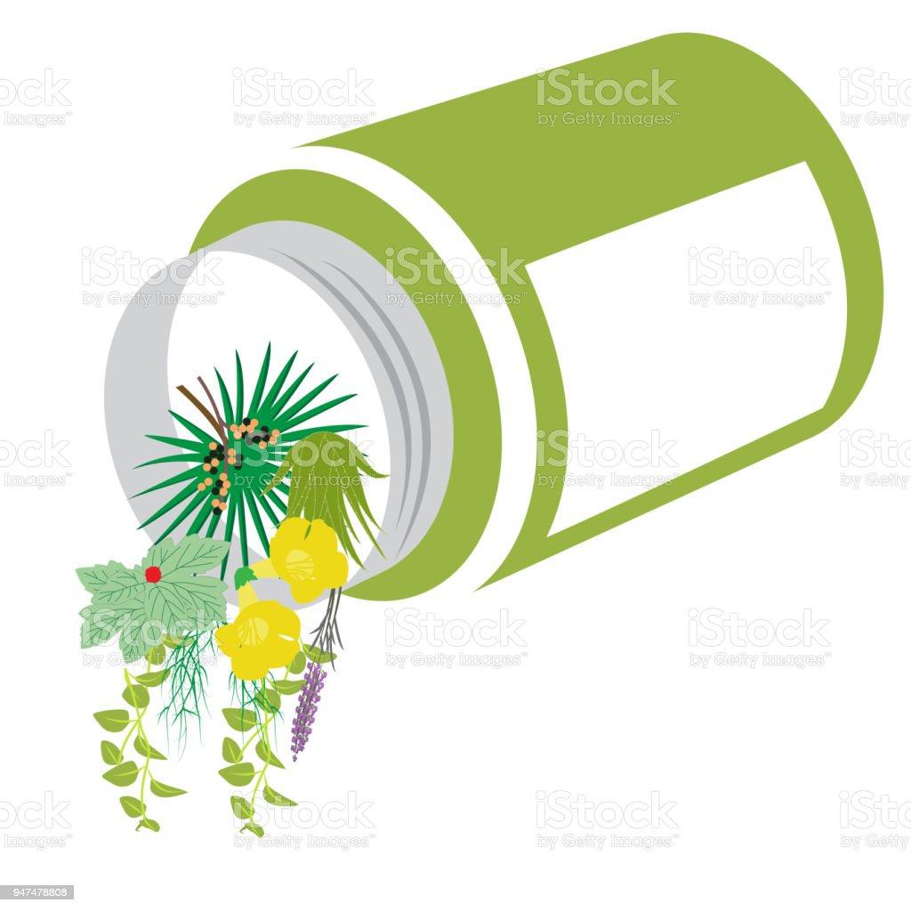 herbs spilling from bottle vector art illustration