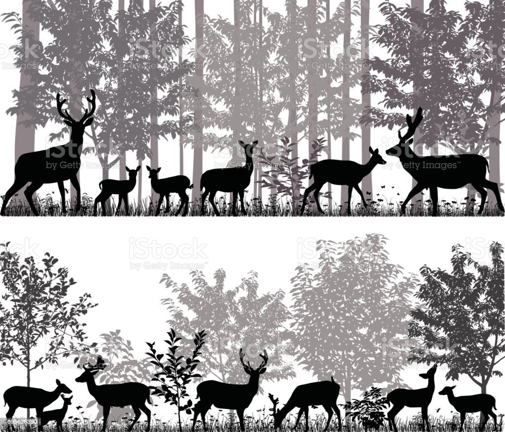Herd of deer vector art illustration