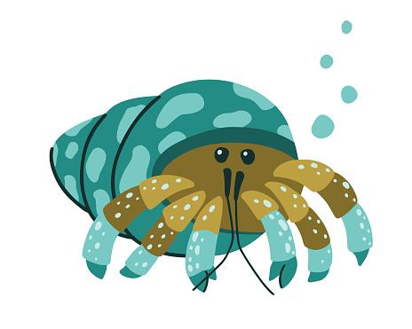 Hermit crab character. Cartoon hand drawn illustration of cute ocean animal
