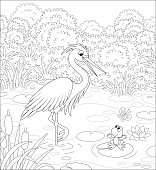 Big wader with a small toad in water of a pond among cane, grass and bushes of a summer meadow, black and white vector cartoon illustration for a coloring book