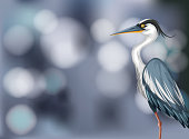 A heron on blurry background illustration