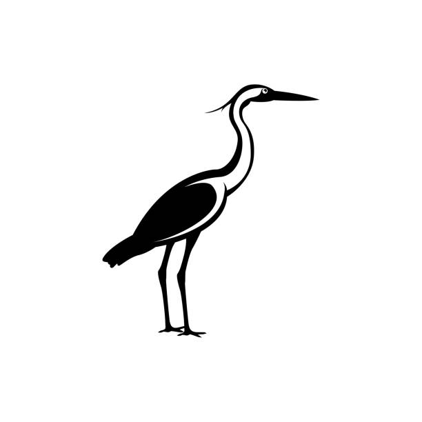 heron silhouette vector heron bird silhouette water bird stock illustrations
