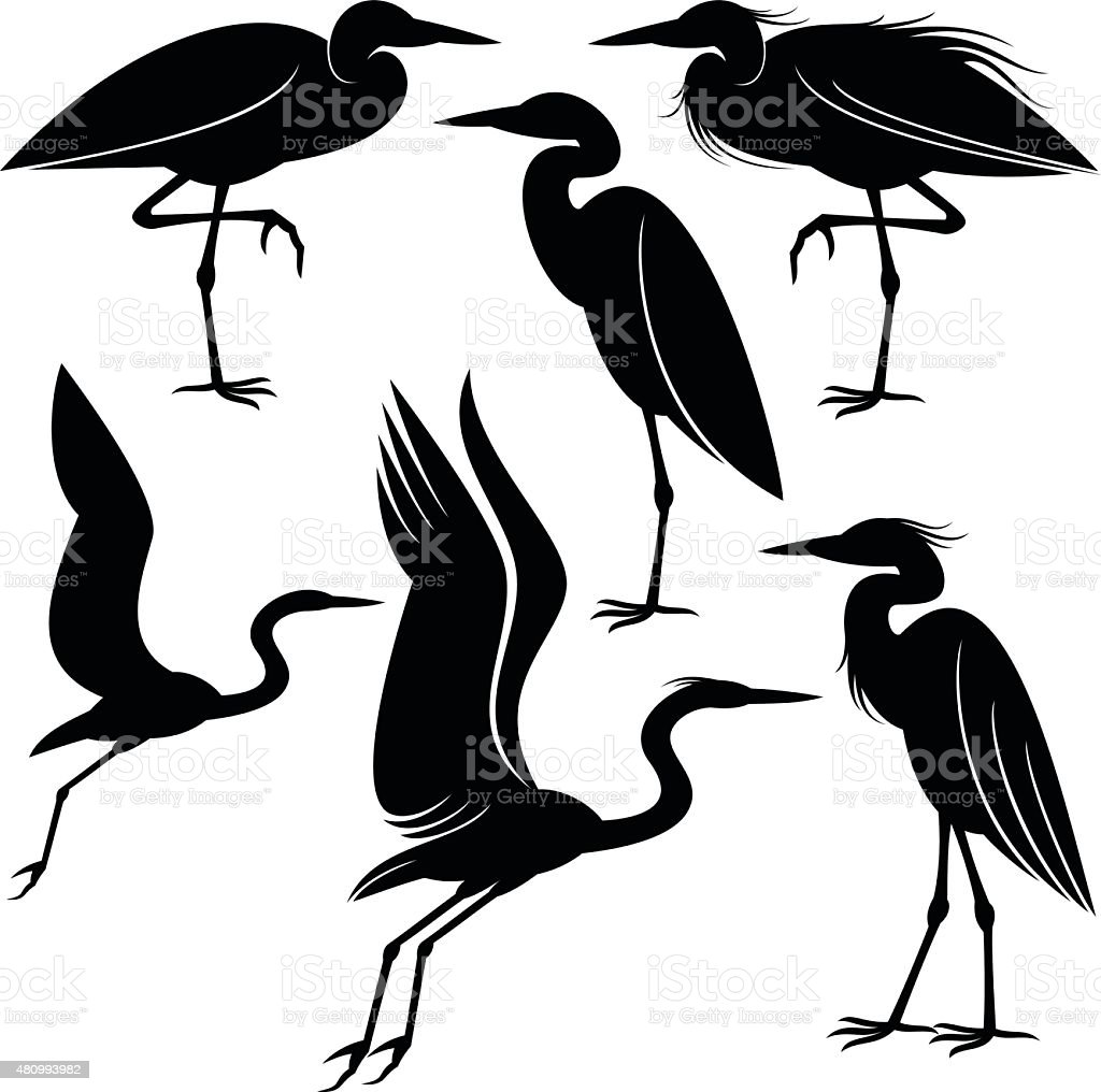 royalty free heron clip art vector images illustrations istock rh istockphoto com blue heron clipart free heron clipart black and white